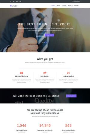 宽屏大气市场营销销售公司网站模板