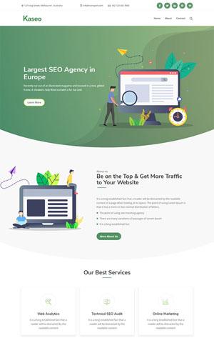 seo搜索优化营销公司网站模板